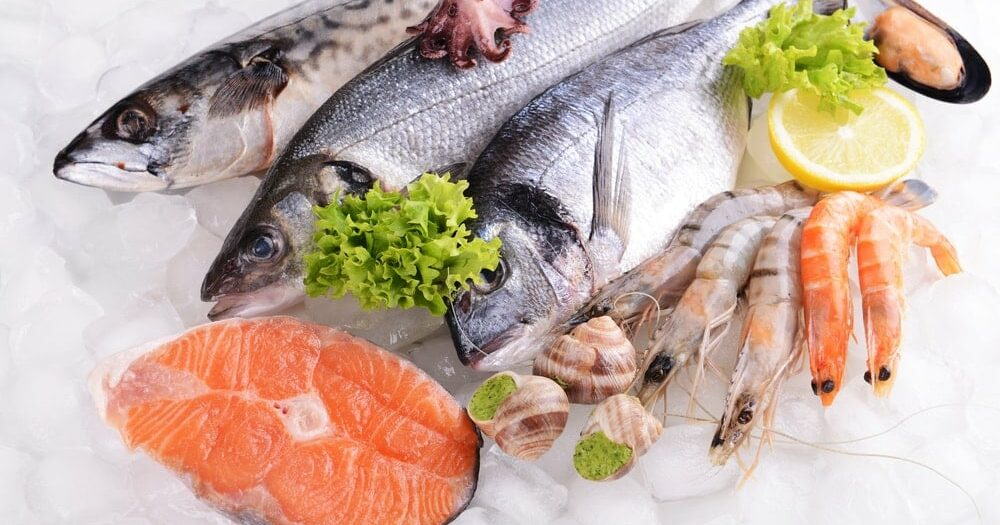 Difference between Fish and Shellfish (Quick Read)